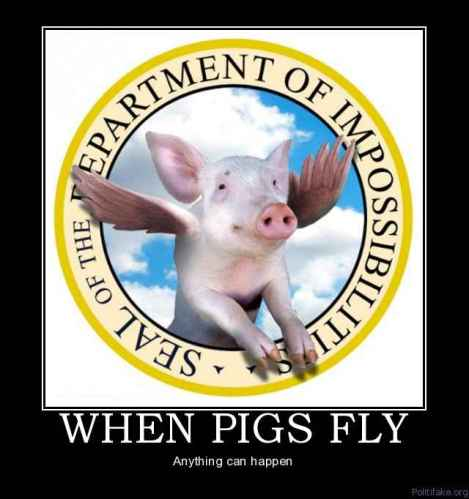 whn pigs fly 1